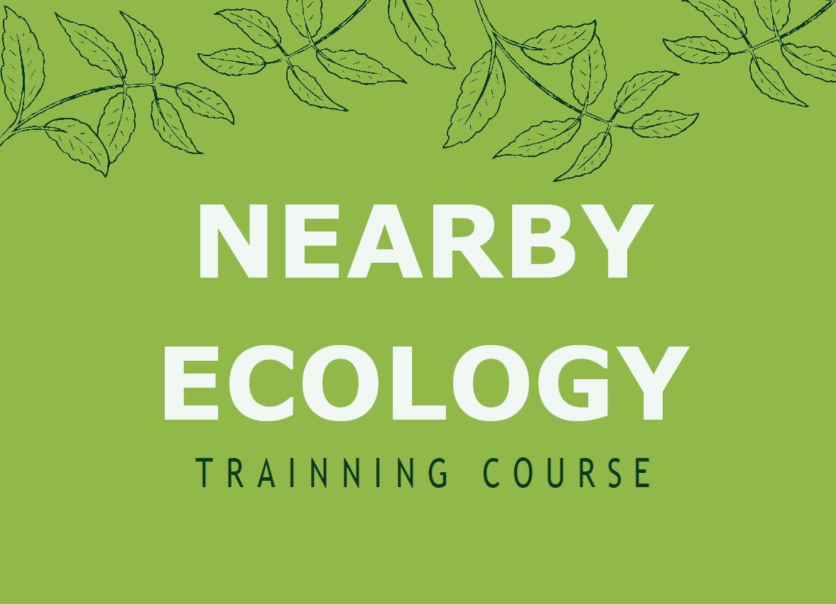 Nearby Ecology | Corso di formazione Erasmus+
